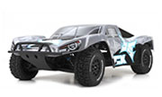ECX Torment 2WD